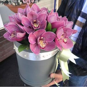 11 крупных розовых орхидей в коробке R788