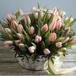 Корзина 45 нежных тюльпанов R996