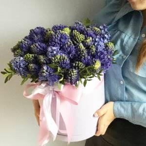 51 синий ароматный гиацинт в коробке R1079