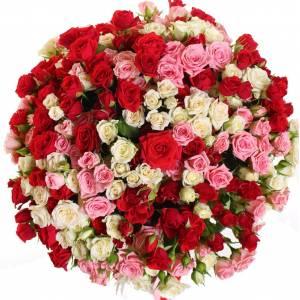 Большой букет 101 кустовая роза микс R317